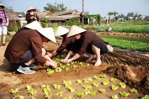 Học làm nông dân