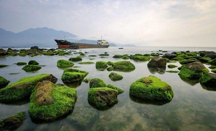 Rạn Nam Ô Đà Nẵng