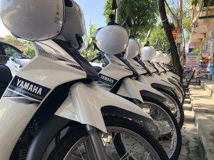 thue xe may tphcm main 300x225 - 5 Địa Chỉ Thuê Xe Máy TP.HCM | Vừa Rẻ Vừa Hỗ Trợ Nhanh